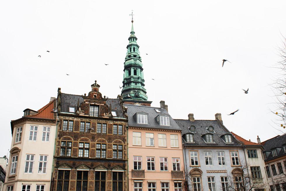 Nov. 2019 Denmark-47.jpg
