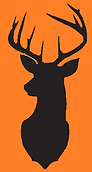 deer left on orange.png