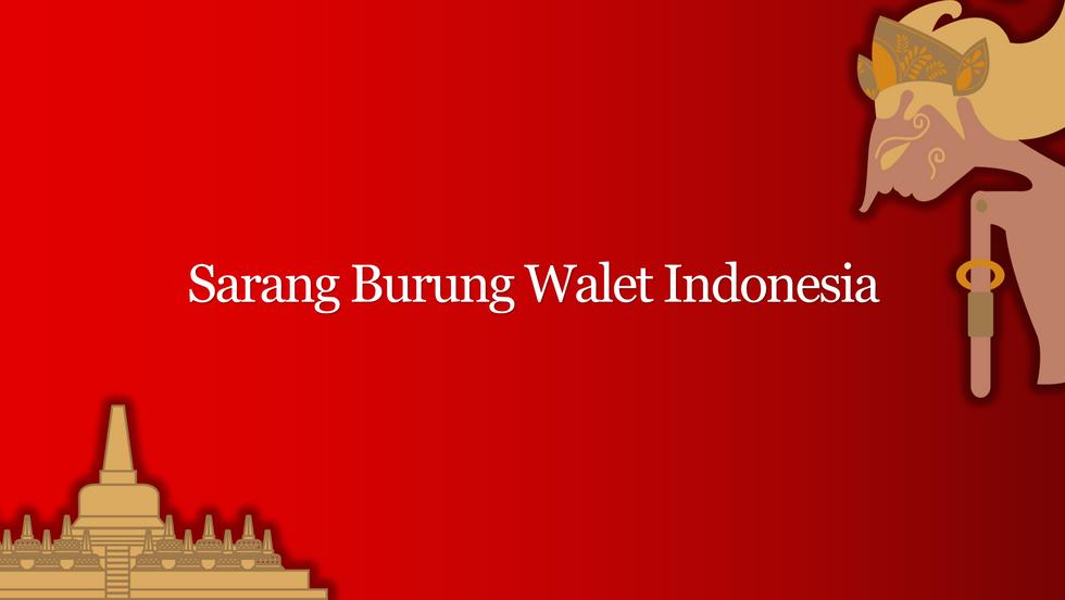 Sarang Burung Walet Indonesia