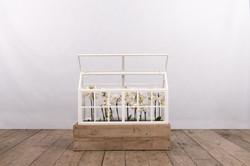 Serra ALASSIO in ferro, vetro e legno | 45x100xh60 cm
