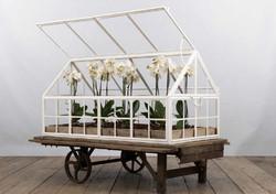 Serra SANREMO in ferro, vetro e legno | 80x155xh120 cm