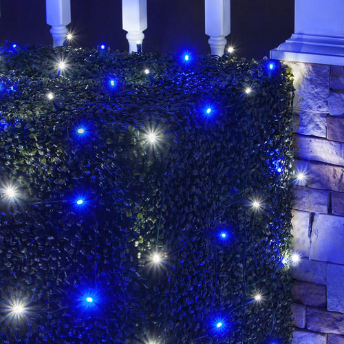 4' x 6' Blue, Cool White 5mm LED Christmas Net Lights, 100 Lights on Green Wire