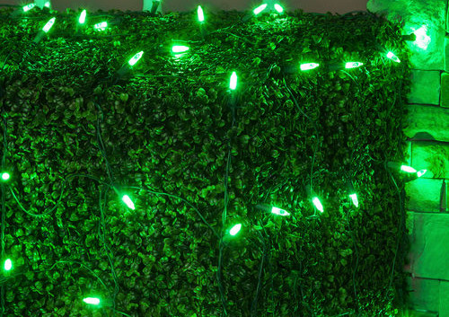 LED-M5-Green-Net-Lights-Green-Wire-9181.