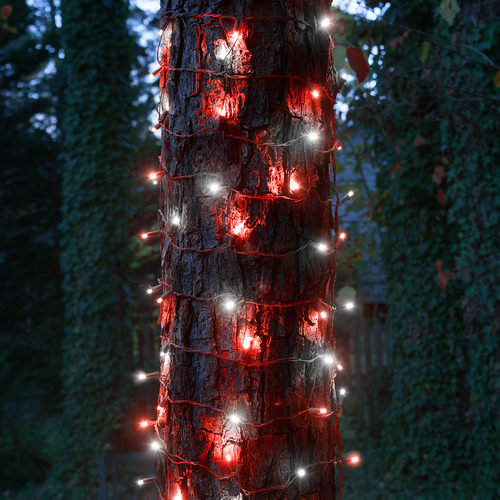 """20"""" x 45"""" Red-Cool White StretchNet Pro TM 5mm LED Christmas Trunk Wrap Lights"""