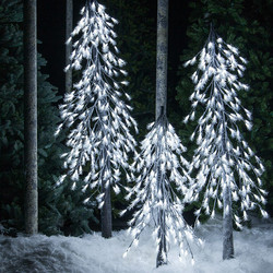 Outdoor and Indoor Trees