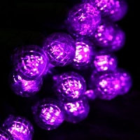 70 count LED Purple C6 Christmas Light String