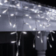 M5-white-LED-icicle-lights_6969-1014.jpg