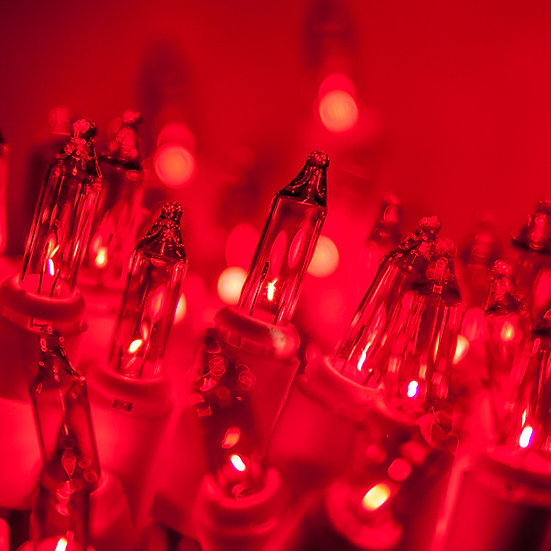 Red Incandescent Christmas Lights Case 2400 bulbs