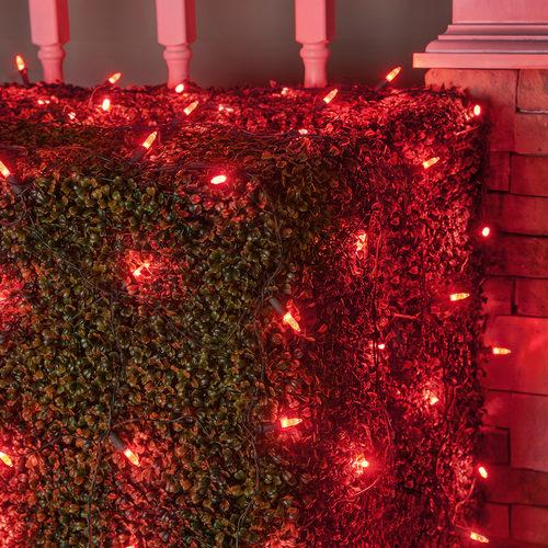 LED Net Lights
