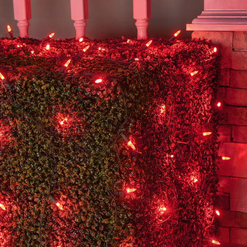 4' x 6' Red M5 LED Christmas Net Lights, 100 Lamps on Green Wire