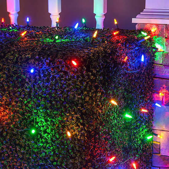 4' x 6' Multicolor M5 LED Christmas Net Lights, 100 Lights on Green Wire
