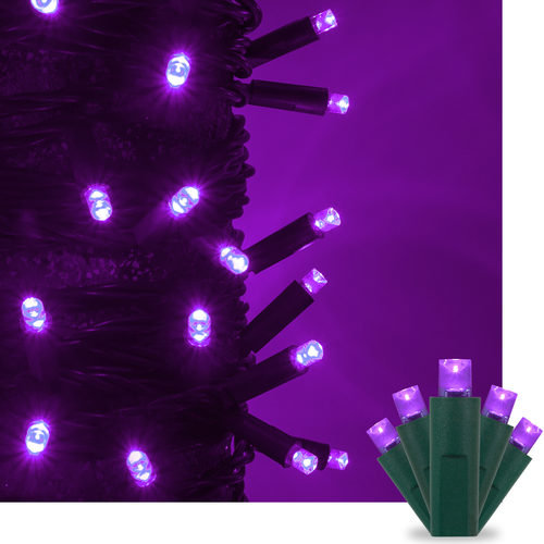 Kringle Traditions 5mm Purple LED Christmas Lights on Green Wire