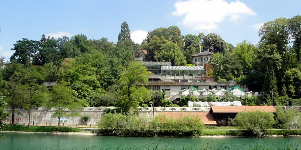 La nature en ville de Berne