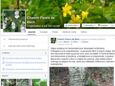 Le Chemin des Fleurs de Bach d'Yvonand possède aussi une page Facebook