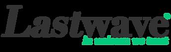lastwave Logo grey copy.png