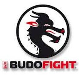 Logo Budo Fight.jpeg