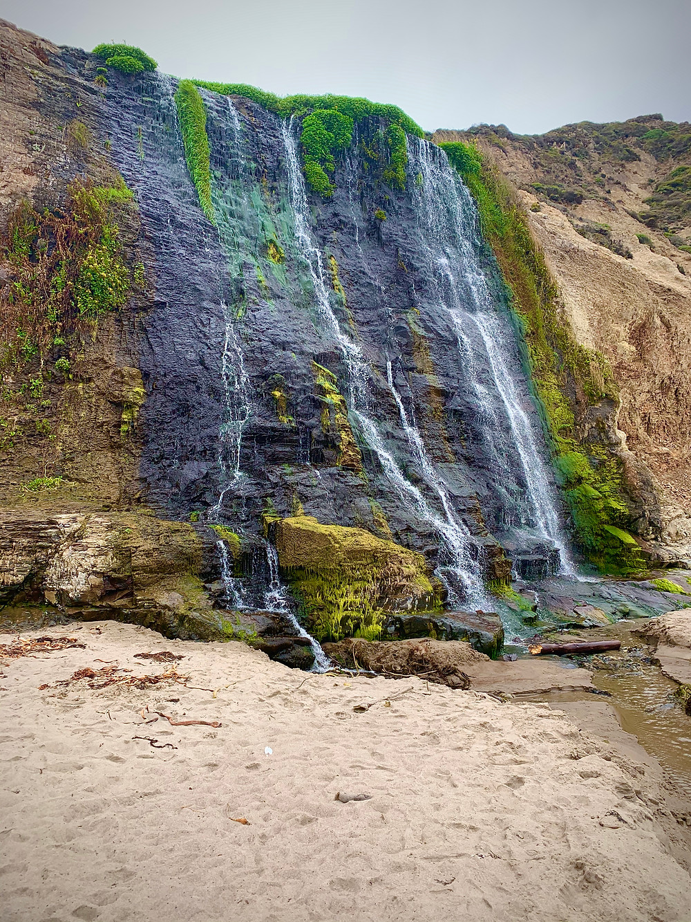 Bay Area Best Hike, Alamere Falls