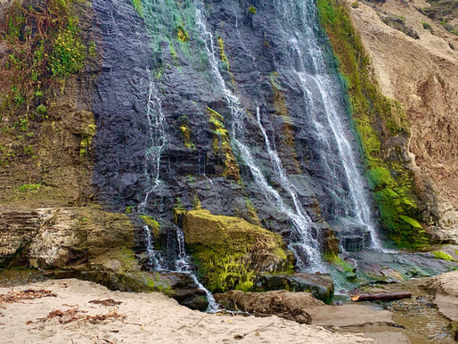 California's Best Day Hike to Alamere Falls, via Palomarin Trailhead!