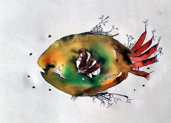 Fish J