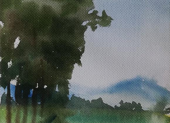 Small landscape_q