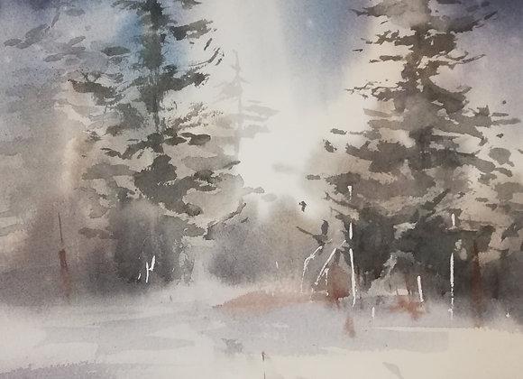 """""""Powder snow"""""""