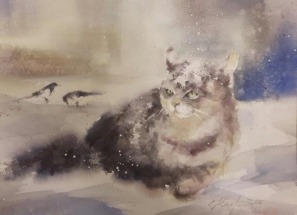 Nordic cat