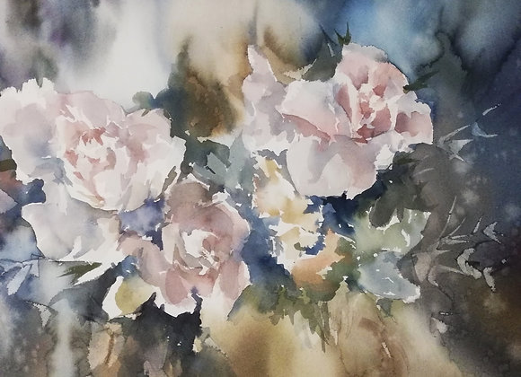 """Blush rose"""