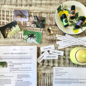Homeschool with Me: Science