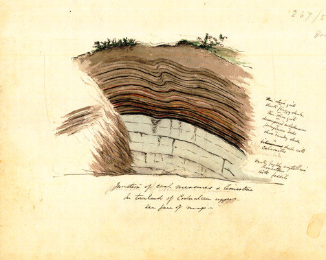 By hammer, lens and ... pencil - Frederick James Foot, forgotten Irish geologist (1830 -1867)