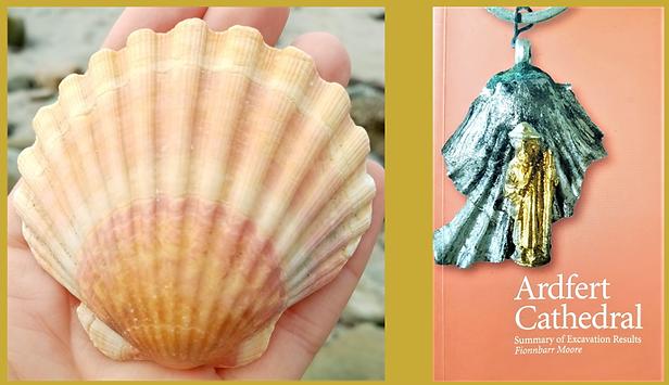 scollop_shells.png