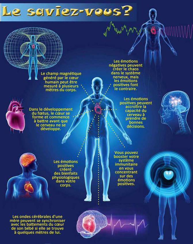 Lorsque l'on reparle d'épi génétique: Ou le pouvoir de nos pensées, et de notre environnemen