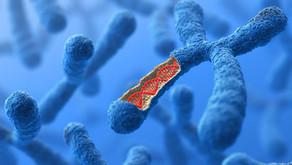Kodlanmayan RNA'lar