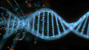 DNA Transpozonlarının Evrimsel Dinamikleri