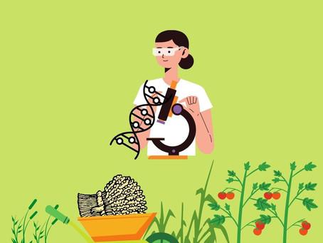 Genetiği Değiştirilmiş Bitkiler