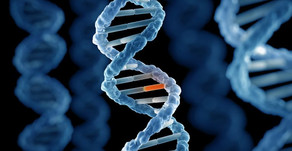 Mutasyon Özellikleri ve Sebepleri