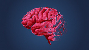 Beyin Travmalarında SUR1-Trpm4 Yapısının İşlevi ve Tip 2 Diyabet İlaçlarının Etkileri