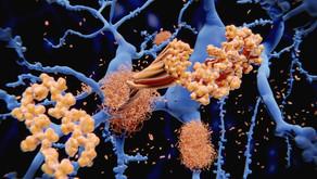 Farklı Katlanmış Proteinler Hastalık Belirtisi Olabilir
