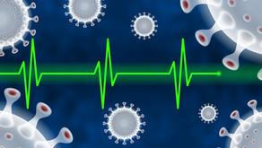 Bağışıklık Sistemi ve Mikrobiyota Etkileşiminin Hastalıklarla İlişkisi