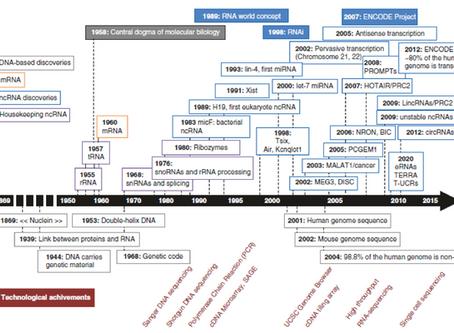 Geçmişten Günümüze Uzun Kodlanmayan RNA'lar (lncRNA)