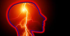 Epilepsi Hastalığının Genetik Ve Bağırsak Mikrobiyotası İle İlişkisi