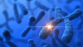 Sıçrayan Genler ve Nöropsikiyatrik Bozukluklar Üzerinde Etkisi