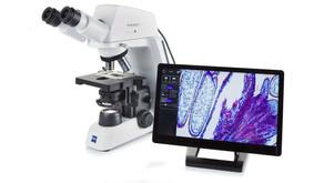 Işık Mikroskopisi