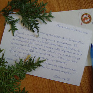 Johanne Bilodeau, Correspondance, 2021