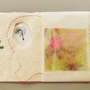 Sophie Lavigne, Correspondance forestière, 2021