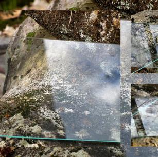 Anna Sylvia, Superposition nature / verre I, 2021