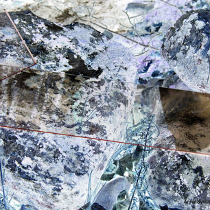 Anna Sylvia, Superposition nature / verre IV, 2021