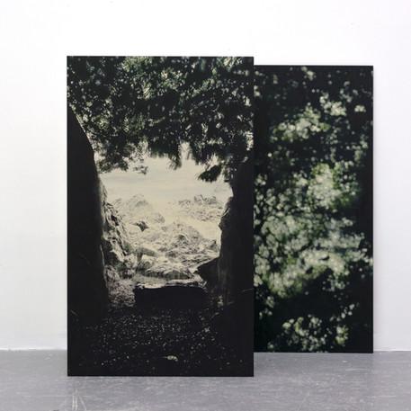 Florence Viau, Hiatus, 2020