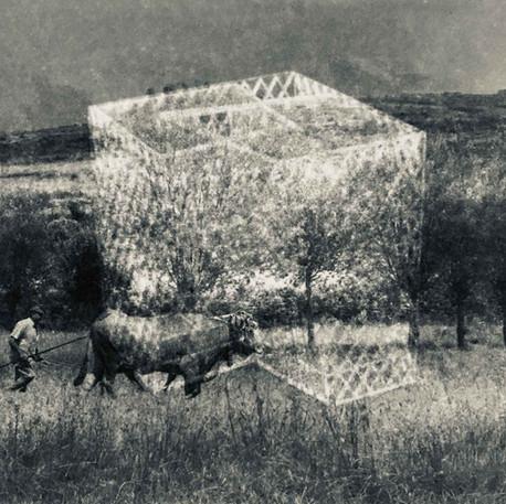Anne-Julie Hynes, Enclos Architectural, 2020