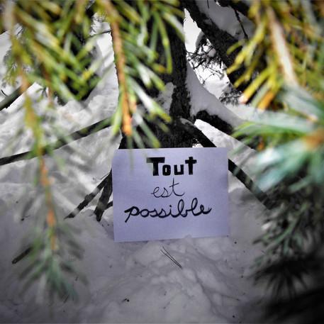 Audray Bordeleau, Tout est possible…, 2021