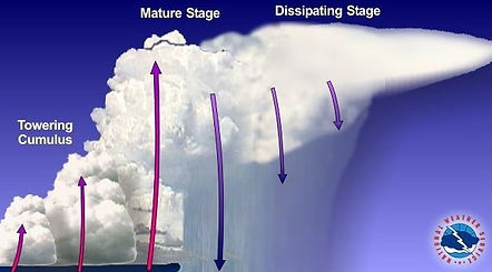 thunderstorm stages.jpg